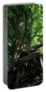 Tree On Pierce Stocking Scenic Drive Portable Battery Charger by Michelle Calkins