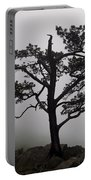 Tree On The Blue Ridge Parkway Portable Battery Charger