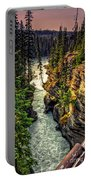 Tree On The Edge Of A Cliff Portable Battery Charger