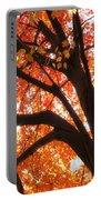 Tree Orange Blast Portable Battery Charger