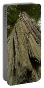 Tree Redwood Ca 1 Portable Battery Charger