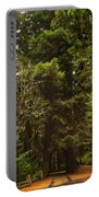 Tree Redwood Ca 6  Portable Battery Charger