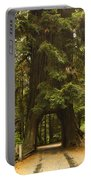 Tree Redwood Ca 7 Portable Battery Charger