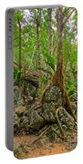Tree Roots On Rock Portable Battery Charger