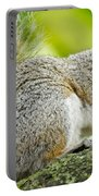 Tree Squirrel Portable Battery Charger