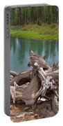Tree Stump In Des Chutes Nf-or Portable Battery Charger