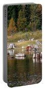 Tree Stumps At Clear Lake Portable Battery Charger