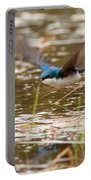 Tree Swallow In Flight Portable Battery Charger