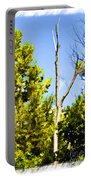Tree Tops IIi  Digital Paint Portable Battery Charger