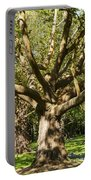 Tree Trunk And Limbs Portable Battery Charger