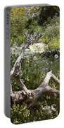 Tree Trunk In The Meadow Portable Battery Charger