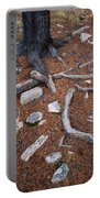 Tree Trunk Roots And Rocks Portable Battery Charger