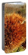 Tree Urchin Portable Battery Charger