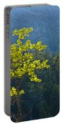 Tree With Yellow Leaves In Acadia National Park Portable Battery Charger