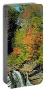Trees And Falls Portable Battery Charger