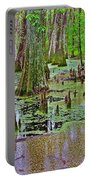 Trees And Knees In Tupelo/cypress Swamp At Mile 122 Of Natchez Trace Parkway-mississippi Portable Battery Charger
