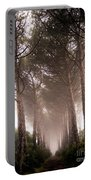 Trees And Mist Portable Battery Charger