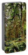 Trees At Olympic National Forest Portable Battery Charger