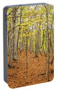Trees In A Forest, Stephen A. Forbes Portable Battery Charger