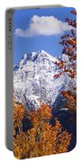Trees In Autumn, Colorado, Usa Portable Battery Charger