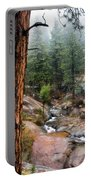 Trees In The Fog Portable Battery Charger