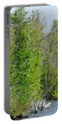 Trees On A Lakeshore Portable Battery Charger