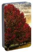 Trees On Fire Portable Battery Charger