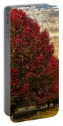 Trees On Fire Portable Battery Charger by Debra and Dave Vanderlaan