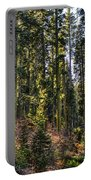 Trees With Moss In The Forest Portable Battery Charger