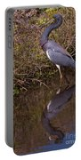 Tri-colored Heron 1 Portable Battery Charger