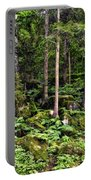 Triberg Forest Portable Battery Charger