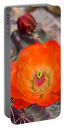 Trichocereus Cactus Flower  Portable Battery Charger