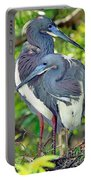 Tricolor Heron Adults In Breeding Portable Battery Charger