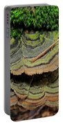 Tricolor Turkeytail Portable Battery Charger