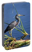 Tricolored Heron At The Pond Portable Battery Charger