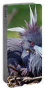 Tricolored Heron Female Incubating Eggs Portable Battery Charger