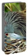 Tricolored Heron Incubating Eggs Portable Battery Charger