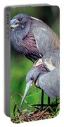 Tricolored Heron Male And Female At Nest Portable Battery Charger