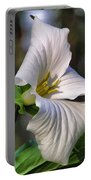 Trillium Purity Portable Battery Charger