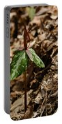 Trillium Signal Mountain Portable Battery Charger