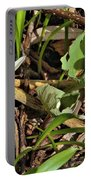 Trio Of Bloodroot Flowers Portable Battery Charger