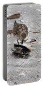 Trio Of Shore Birds Portable Battery Charger