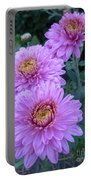 Triplets Of Purple Mums Portable Battery Charger
