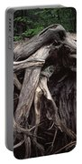 Troots Of A Fallen Tree By Wawa Ontario Portable Battery Charger