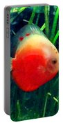 Tropical Discus Fish Portable Battery Charger by Amy Vangsgard