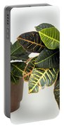 Tropical Houseplant Portable Battery Charger