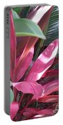 Tropical Spice Portable Battery Charger