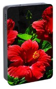Tropical Trio Portable Battery Charger