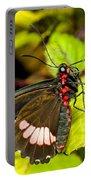 True Cattleheart Butterfly Portable Battery Charger