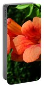 Wild Trumpet Vine Portable Battery Charger
